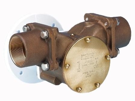 jabsco pump 22890